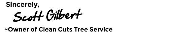 Scott Gilbert Clean Cuts Tree Service Ltd. Owner