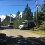 tree-services-qualicum-parksville-coombs-errington-nanoose (6)