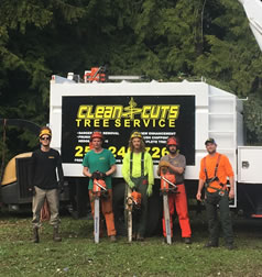 Clean Cuts Tree Service Ltd. Team