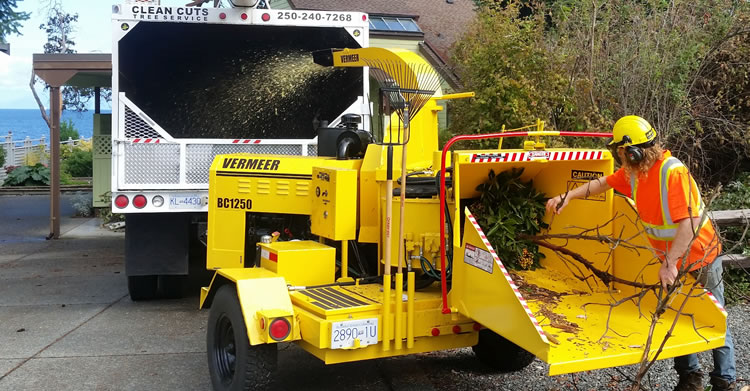 Tree Chipping Services Qualicum, Parksville, Coombs, Errington, Nanoose and Lantzville.
