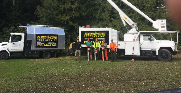 clean-cuts-tree-service-team-and-equipment
